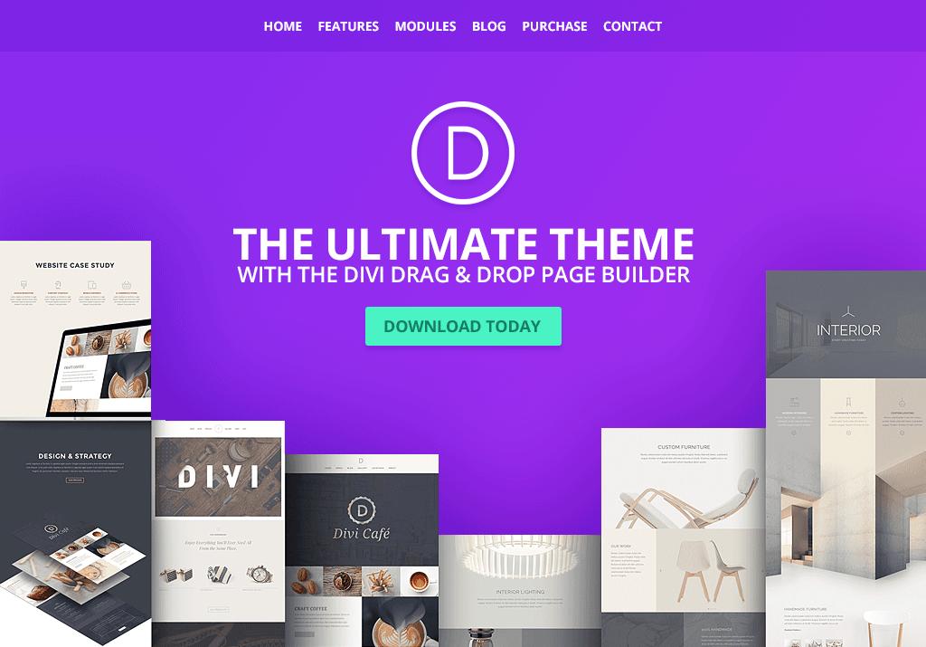 wordpress theme Divi