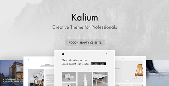 best WordPress theme - Kalium