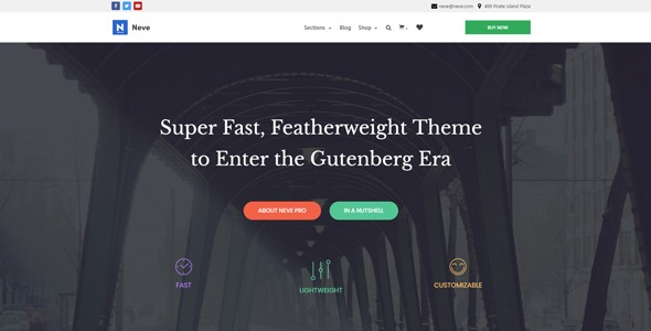 wordpress Theme - neve