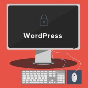 How to access WordPress Admin?