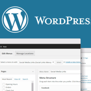 What Is WordPress And How Can You Build Your Website With The Help Of WordPress?