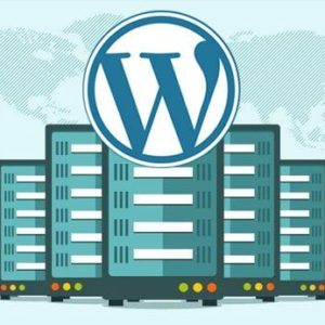 Install WordPress And Get The Fastest Hosting Service For Your Website