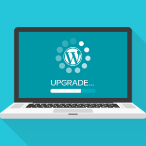 Dashboard, Manual Or Automatic: How to Update WordPress?