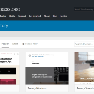 Why To Choose The Best WordPress Templates For Your WordPress Website?